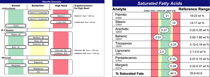 test-Nutrient-Metabolic-Assessment--web