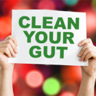 Give Your Gut A Much Needed Clean Up