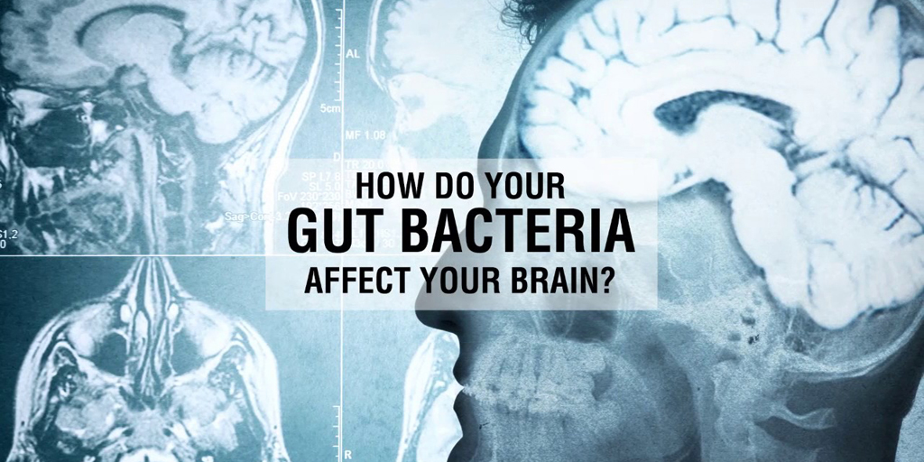 How Your Gut Affects Your Brain, Your Skin, And Your Weight