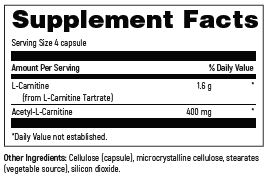 Carnitine Synergy